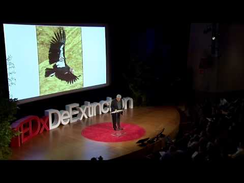Rules, Regs, and Reactions: James Tate at TEDxDeExtinction