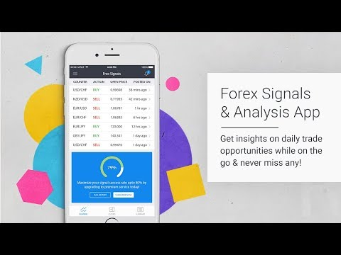 Google analytics forex