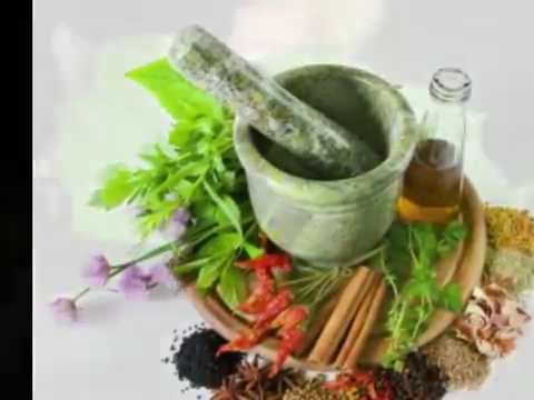 cara memperbesar penis dengan ramuan daun jarak herbal youtube