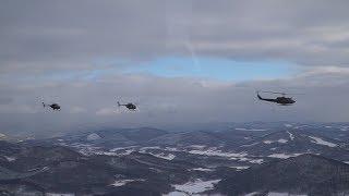 活躍する自衛隊 平成31年年初編隊飛行訓練