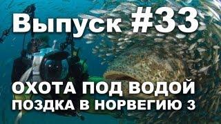 Выпуск 33: Охота под водой 2013. Моя поездка в Норвегию часть 3