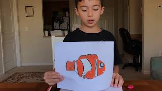 Learn to draw a clown fish step by step