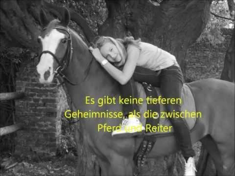 Meine lieblings Pferdesprüche mit Bildern