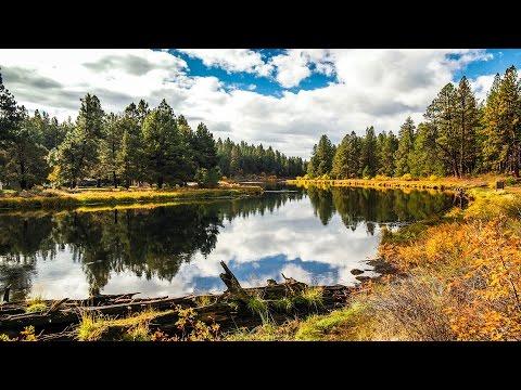 Oregon's Fall Time Lapse 4K UHD