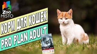 Корм для взрослых кошек Пурина Про План | Обзор корма для котов | Purina Pro Plan Adult Cat review