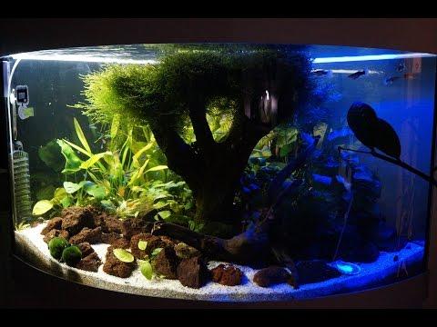 Aquarium LED Blue Night Wight Day LED RGB JUWEL Trigon 190