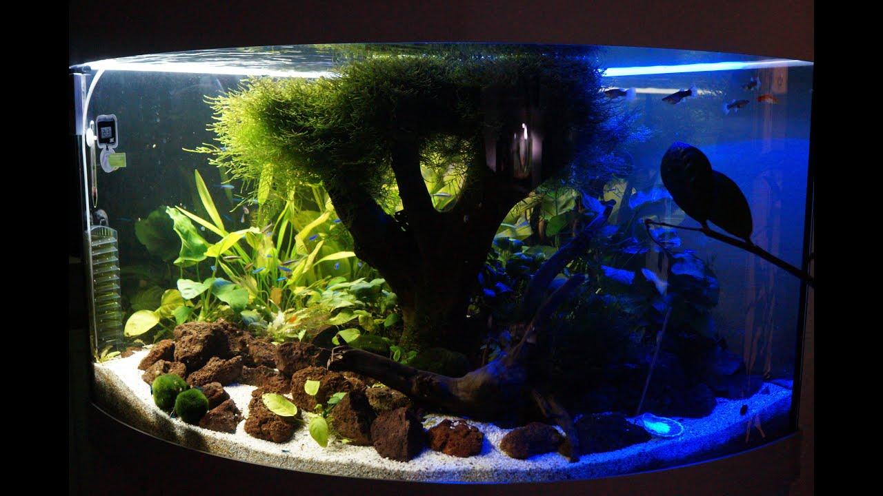 aquarium led blue night wight day led rgb juwel trigon 190 youtube. Black Bedroom Furniture Sets. Home Design Ideas