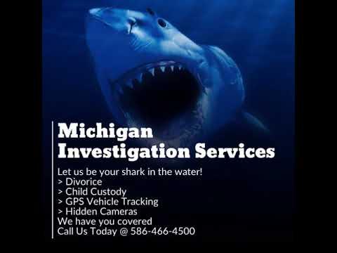 Michigan Private Investigation services
