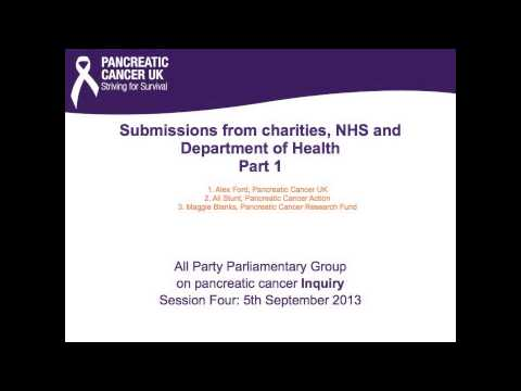 The UK APPG on Pancreatic Cancer Inquiry session 4, Part 1