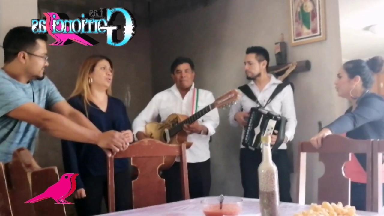 */-El Columpio*/- with Las Gorrioncillas Feat Soñadores de la Frontera