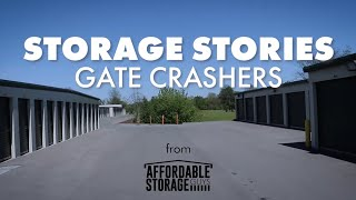 Storage Stories- Gate Crashers