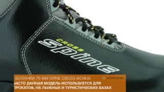 Обзор лыжных ботинок 75 мм Spine Cross