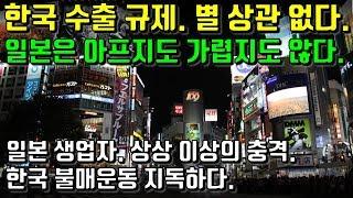 한국 수출 규제. 별 상관 없다. 일본은 아프지도 가렵지도 않다. 일본 생업자. 상상 이상의 충격. 한국 불매운동 지독하다.