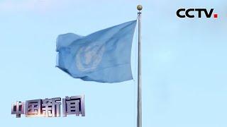 [中国新闻] 联合国总部:古特雷斯暂停联合国维和人员轮换部署 | 新冠肺炎疫情报道
