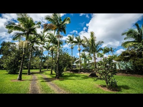 Lava Tree Tropic Inn - Pahoa Hotels, Hawaii