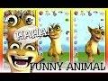 talking funny animal big fun обзор игры андроид game rewiew android