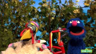 sesame street grover and humongous chicken demonstrate how to wear bicycle equipment