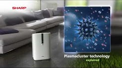 Sharp Air Purifiers with Plasmacluster Ion Technology
