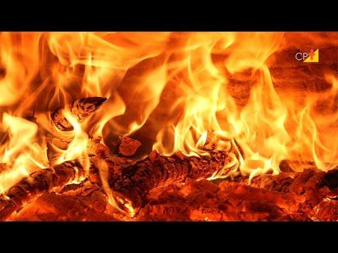 Conhecendo o Fogo - Curso a Distância Formação e Treinamento de Brigada de Incêndio Florestal