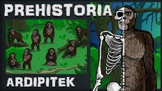 Prehistoria - Odc.1 - Ardipitek - Historia na Szybko