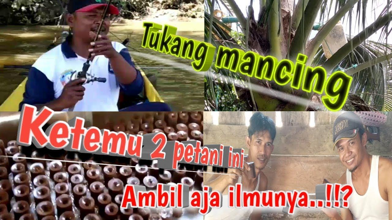 Proses pembuatan gula merah dari kelapa(dalam)//inspiratif ...