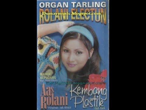 Lagu Tarling Manuk Kepudang // Voc : Hj Aas Rolani