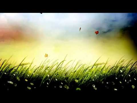 Grass Background Video Effects - Video Effects HD Free Stock  25fps video Templates Animation 1080p