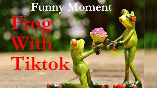 Frog and Cat with Jim Funny Tiktok Videos | Like App  | The Ajaira FOS.
