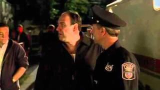 The Sopranos - Meadow Throws A Party