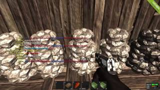 rust 4 serve de rust v25 invadindo 2 casas