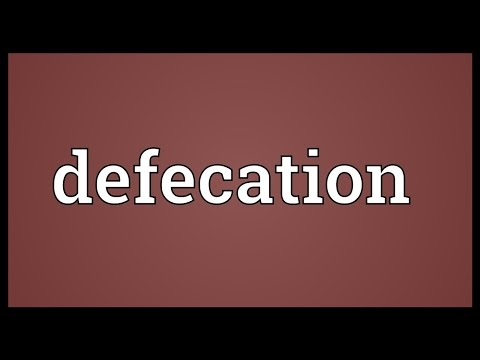 Defecation Meaning