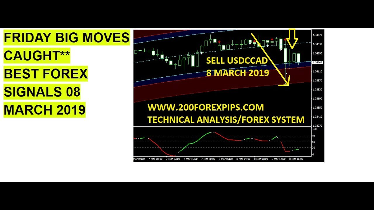 Forex news trading system