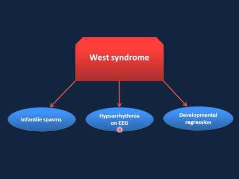 Pediatric Neurology Review