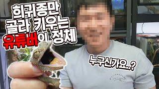한국에서 초희귀종만 골라키우는 유튜버의 사육방 대공개