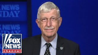 NIH director: Delta variant is a 'different virus,' could hit reset button