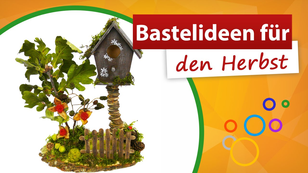 bastelideen f r den herbst geniale vogelhaus deko basteln trendmarkt24 youtube. Black Bedroom Furniture Sets. Home Design Ideas