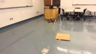 Cardboard Quadcopter Testing