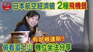 JAL日本航空經濟艙2種飛機餐分享 有哈根達斯! 俯看富士山機位坐法大公開 乾杯與小菜的日常