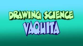 Drawing Science: Vaquita