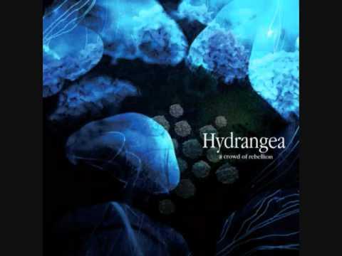 a crowd of rebellion-「Hydrangea」