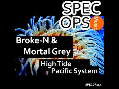 SPECDR019 - Broke-N & Mortal Grey - High Tide & Pacific System