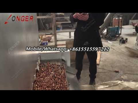 Continuous Hazelnut Drying Machine Equipment - Roasting Process Video