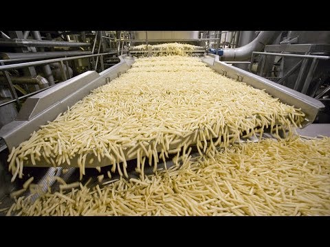 World Amazing Automatic French Fries Production Line Modern Food Processing Technology
