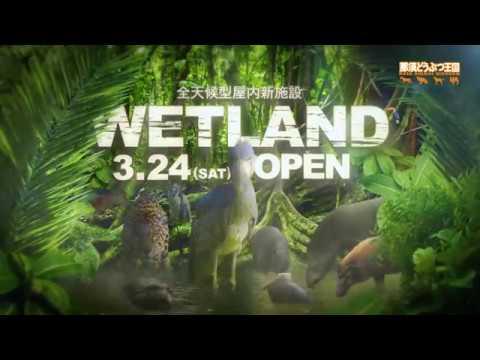 那須どうぶつ王国に、亜熱帯の湿地に暮らす動物達の世界「ウェットランド」オープン