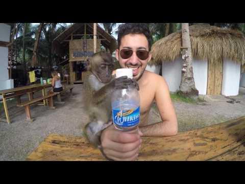#7 ASIA: Philippines & Malaysia Travel II Paradise, Sun, Islands