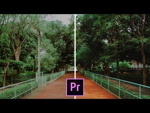 The BEST FREE LUTS for COLOUR GRADING like a PRO!