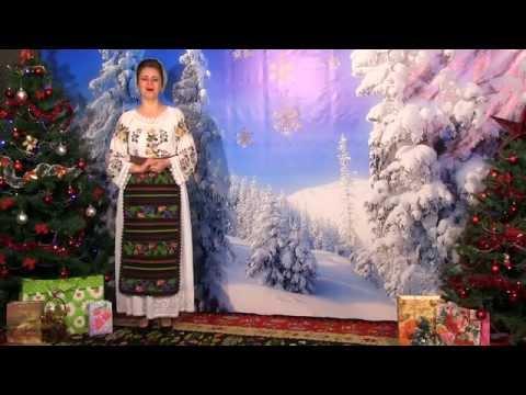Camelia Balmau - N-am primit nimic de-a gata 2014-2015