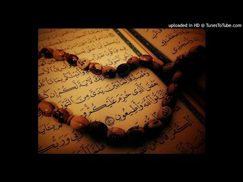 Surah Al-Anbiya - Tafseer 89-91 English