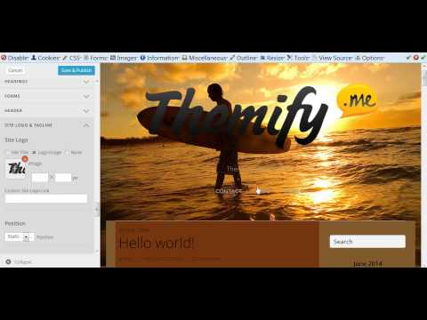 Themify Customize (Old)