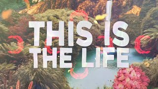 Download Littlekings & Kalkovich - This Is The Life (Lyrics) ft. Zoë Low